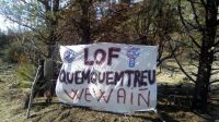 Un grupo de personas volvió a ingresar al terreno desalojado en Cuesta del Ternero