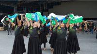 Abren la convocatoria a artistas rionegrinos para participar en Cosquín