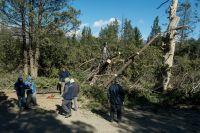 Cuál es el estado de los senderos tras el temporal de viento