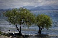 """Carreras, sobre proyectos ambientalistas: """"buscan generar políticas públicas ante el cambio climático"""""""