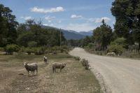Confirman el acuerdo para la creación del Corredor Turístico Río Manso