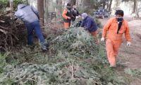 Segundo encuentro por manejo de material forestal en el oeste